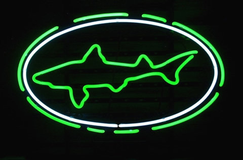 Dogfish Head Lager Beer Classic Neon Light Sign 17 x 14